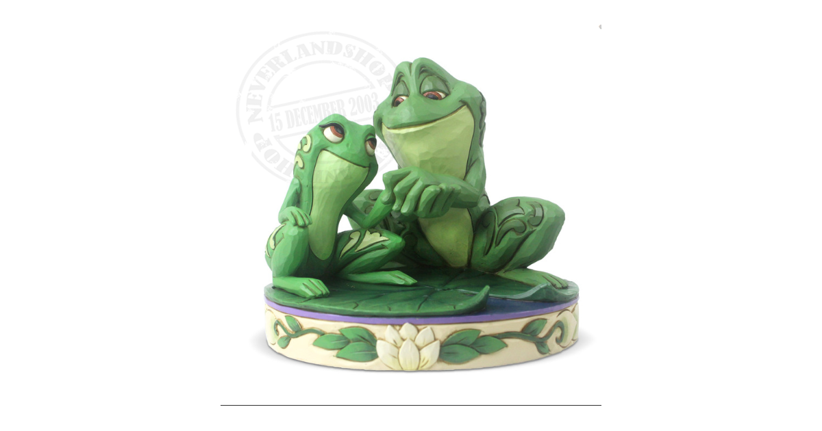NEW Princess & the Frog