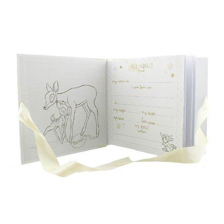 "Magical Beginnings Photo Album 4"" x 6"" - Dumbo"