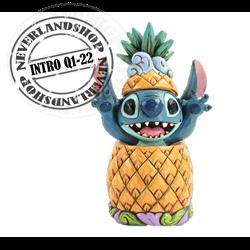 Pineapple - Stitch